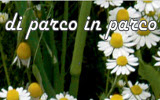 DI PARCO IN PARCO 2017